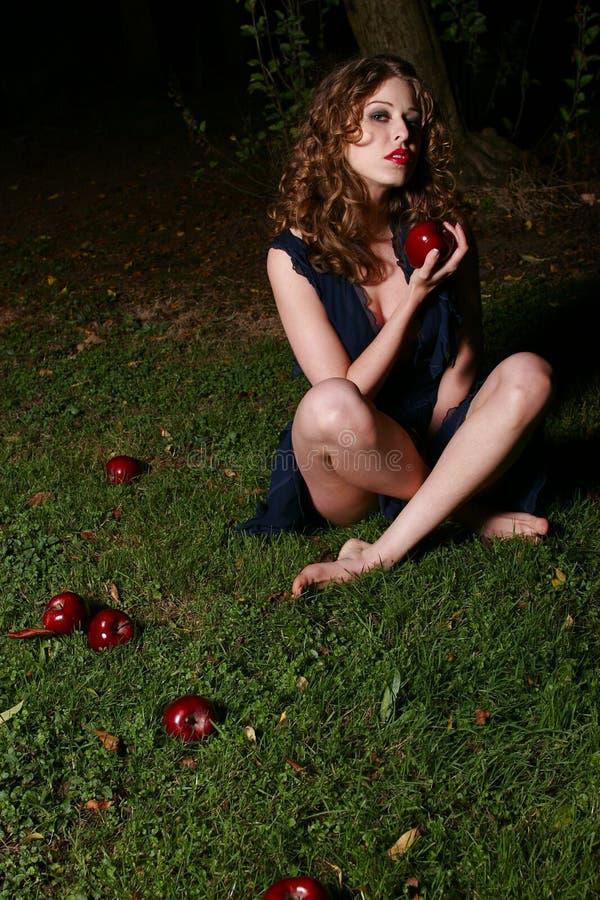 fallna äpplen royaltyfri foto
