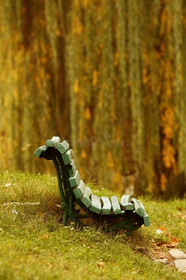 fallparklandskap royaltyfri bild