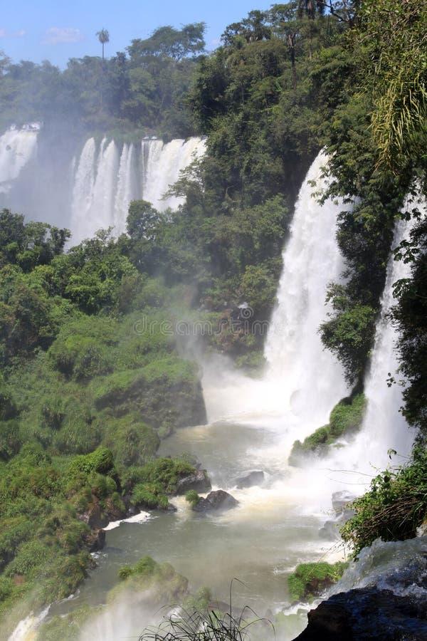 Download Falls stock photo. Image of large, falls, latin, lush - 17153984