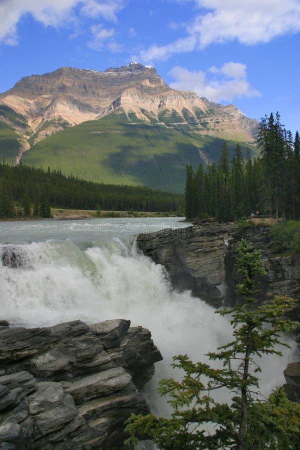 falls athabasca zdjęcie stock