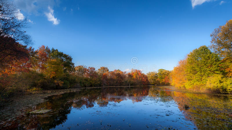 Falls colors and and a blue pond stock image