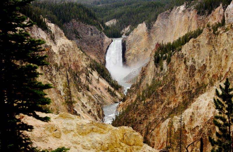 falls fäller ned yellowstone royaltyfri bild