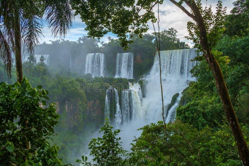 falls iguazu στοκ εικόνα με δικαίωμα ελεύθερης χρήσης