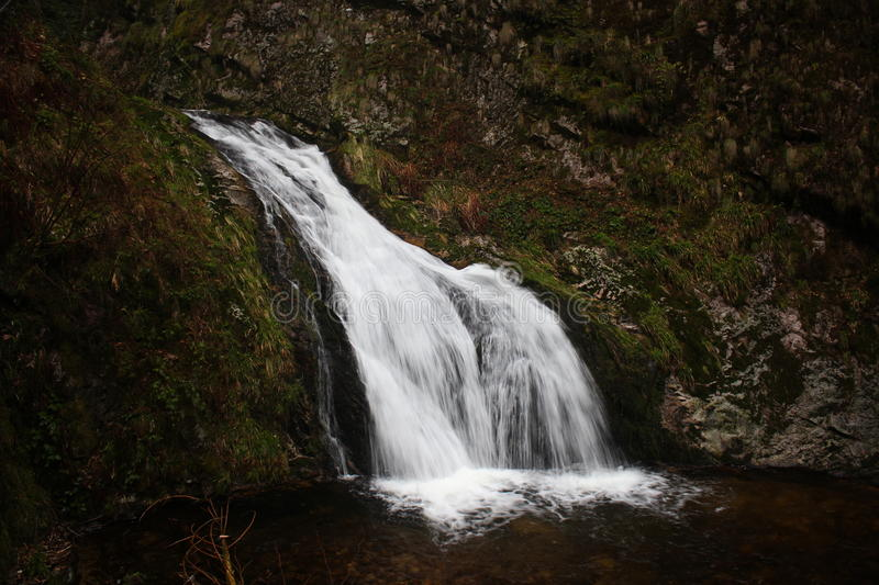 Falls In Middle Of The Forest During Daytime Free Public Domain Cc0 Image