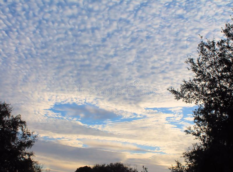 Fallstreak Clouds form as the sun came up. Fallstreak, or Hole Punch, Clouds begin to form as the sun came up this morning stock photos