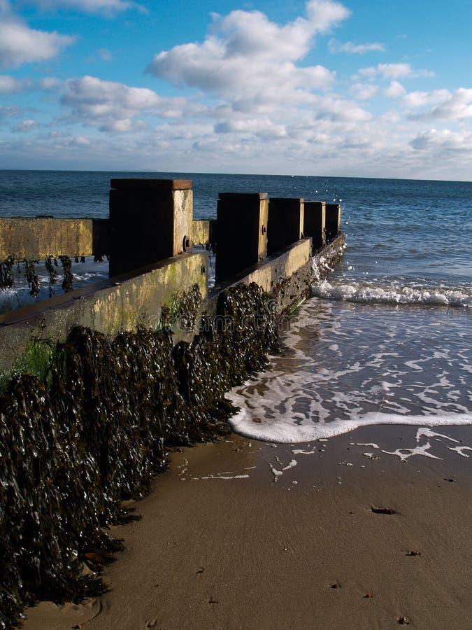 Falochronów plażowi defences zdjęcie royalty free