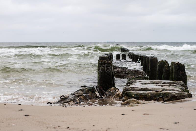 Falochron budował drewniane bele morzem bałtyckim Estonia baltic Tallinn somethere blisko morza fotografia royalty free