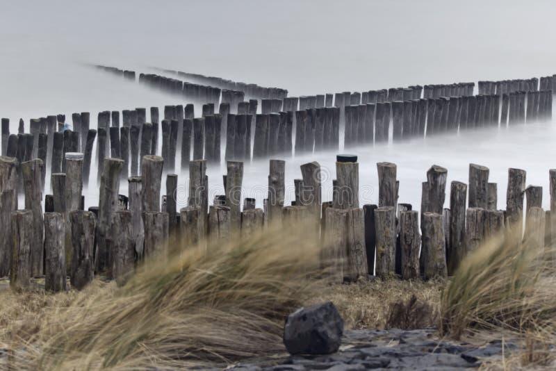 Falochrony na wybrzeżu w Zeeuws-Vlaanderen, Zeeland holandie zdjęcie stock