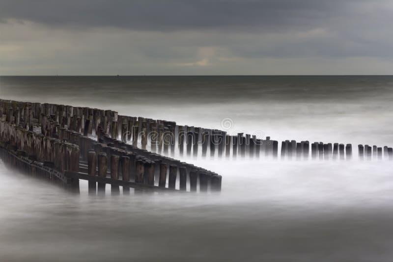 Falochrony na wybrzeżu w Zeeuws-Vlaanderen, Zeeland holandie obraz royalty free