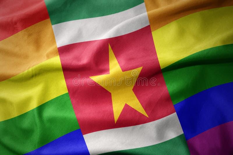 Falowania Suriname tęczy homoseksualnej dumy flaga sztandar obraz stock
