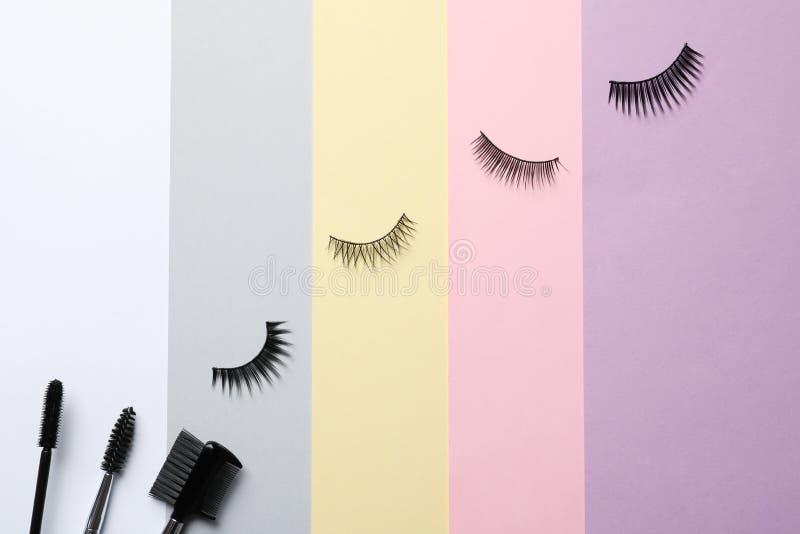 Falsche Wimpern und Bürsten auf Farbhintergrund, lizenzfreie stockbilder
