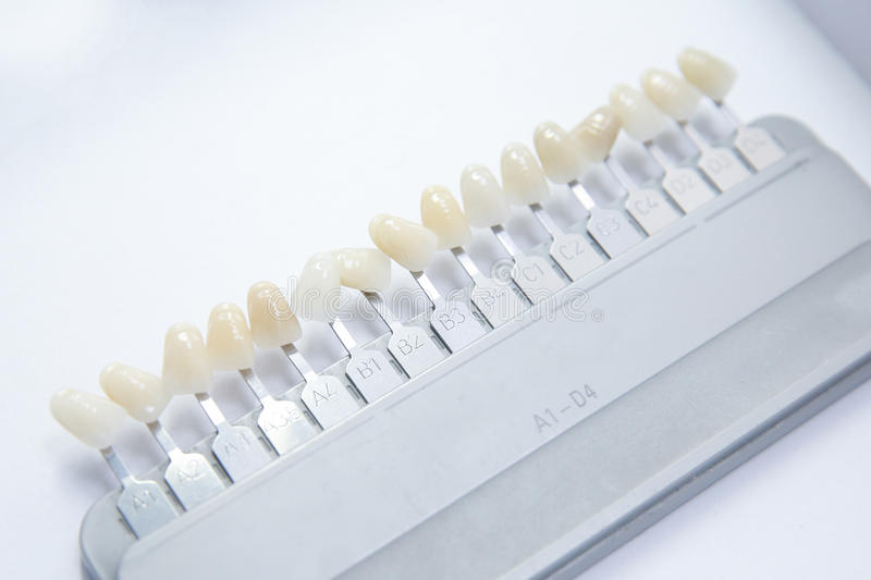 False teeth color samples stock images