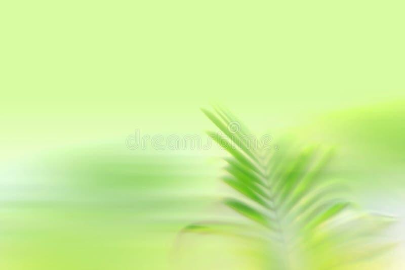 Falta de definición verde de la hoja, fondo del zen de la naturaleza - efecto del movimiento de la velocidad fotografía de archivo libre de regalías