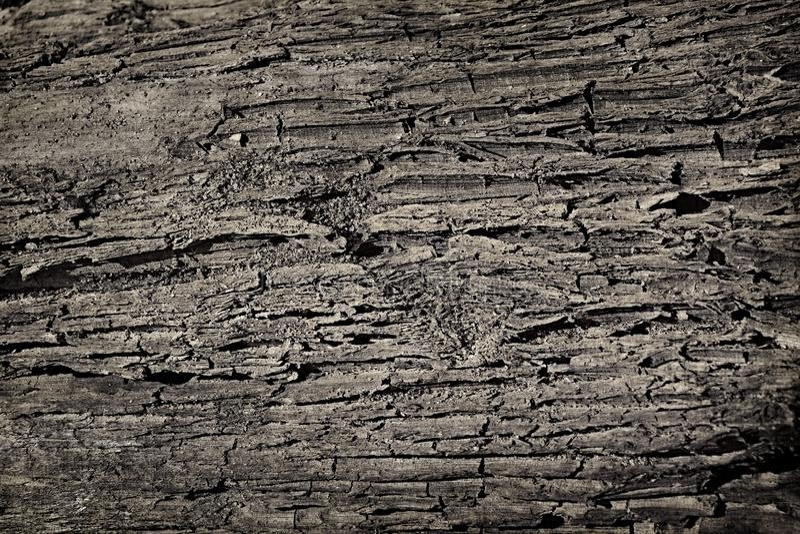 Faltas de la grieta del fondo de la textura de la suciedad del suelo de la arena fotos de archivo libres de regalías