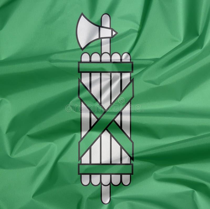 Falte des St- Gallenflaggenhintergrundes, der Bezirk von die Schweiz-Bündnis lizenzfreie stockbilder