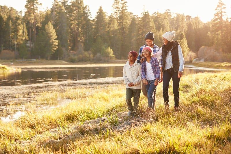 Família afro-americano que anda pelo lago fotos de stock royalty free