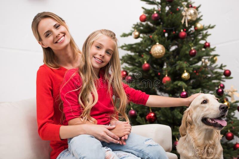 Família com cão imagens de stock