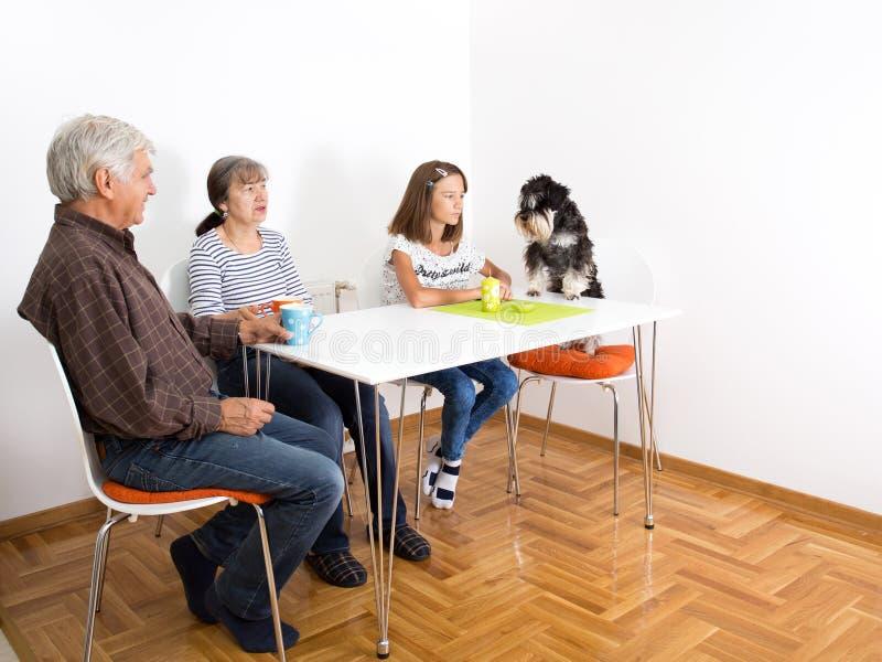 Família com cão imagem de stock