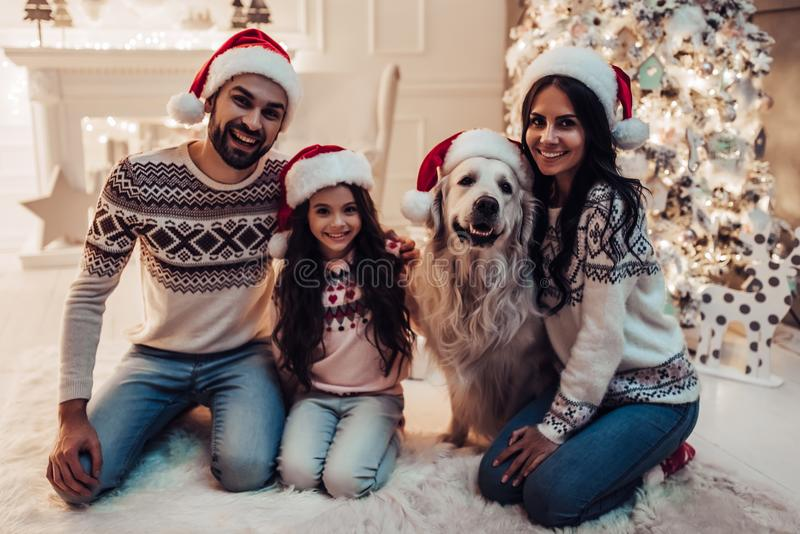 Família com o cão na véspera do ` s do ano novo imagem de stock royalty free