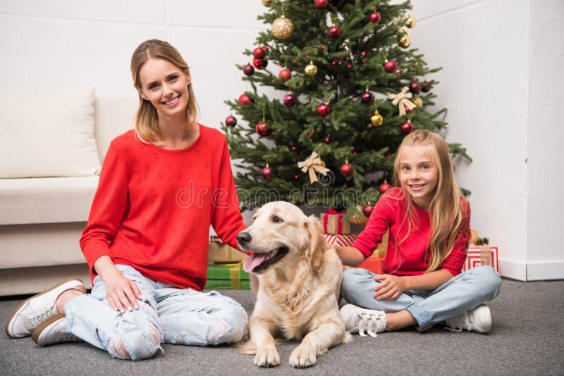 Família com o cão no christmastime imagens de stock royalty free