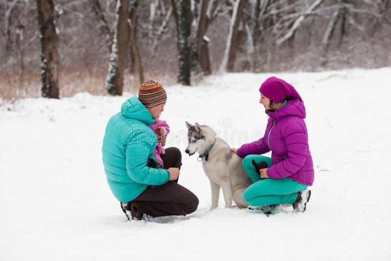 A família com o cachorrinho foto de stock
