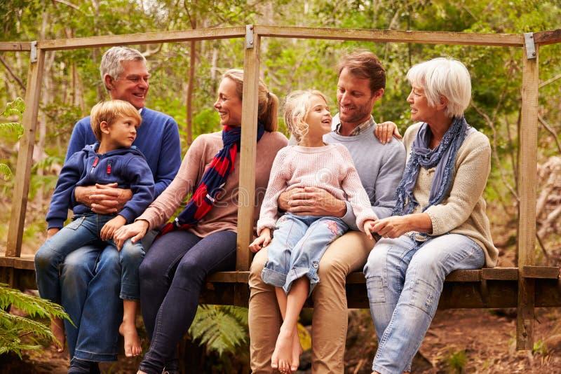 família da Multi-geração que fala em uma ponte em uma floresta foto de stock royalty free
