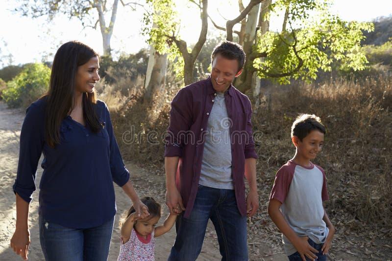 Família da raça misturada que anda no trajeto rural, vista dianteira backlit imagens de stock