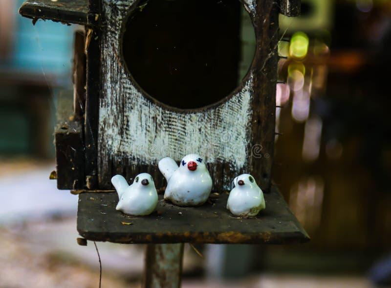 Família de pássaros imagem de stock