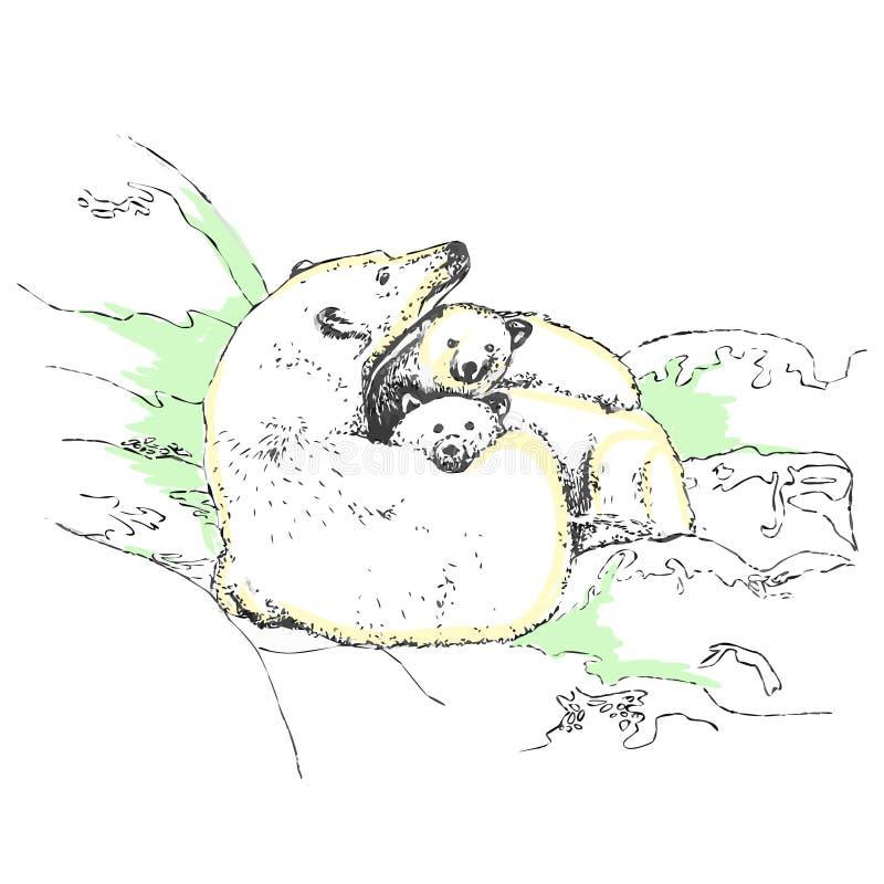 Família dos ursos brancos que encontram-se na banquisa de gelo ilustração do vetor