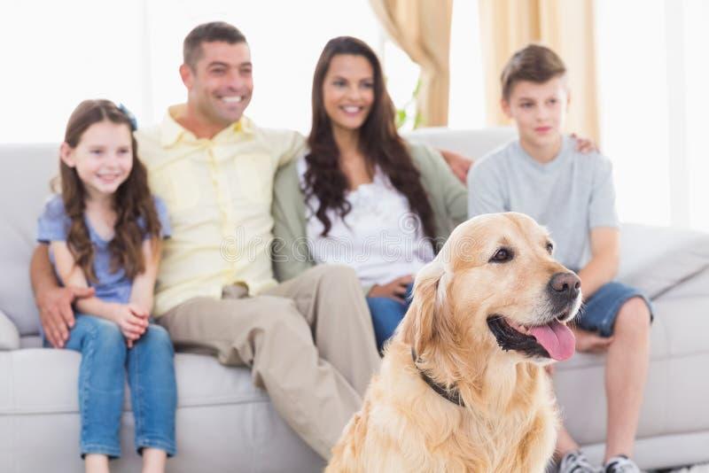 Família e cão que olham a tevê junto fotografia de stock royalty free