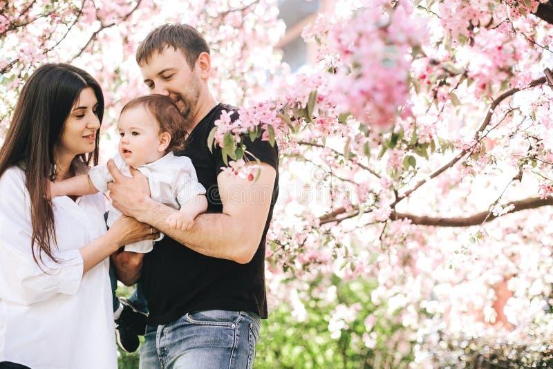 A família feliz bonita com um rapaz pequeno em seus braços está estando em um abraço perto da árvore das flores de cerejeira, sor imagem de stock