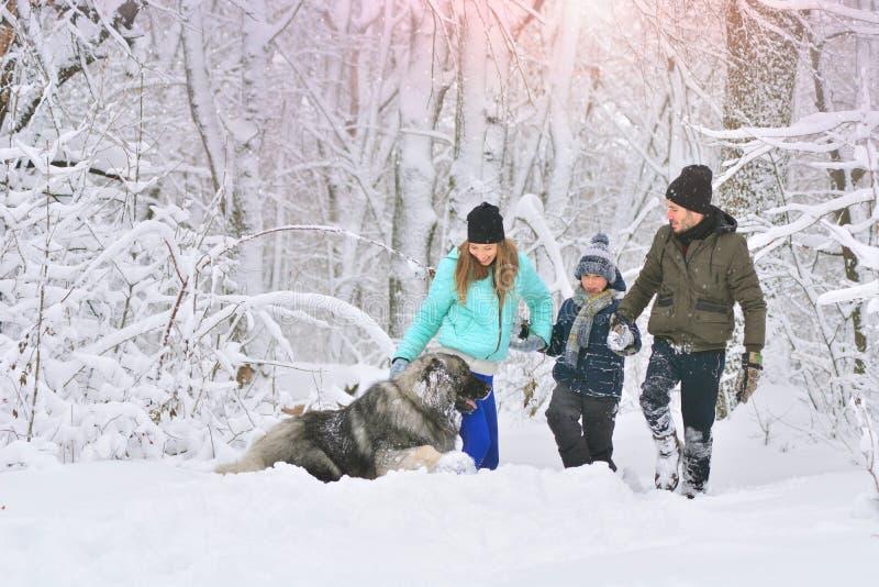 Família feliz com cão fora em uma mãe da floresta do inverno, em um fother, em um filho e em um cão de estimação grande imagens de stock