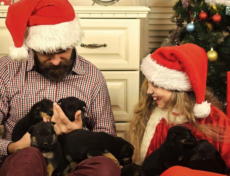 A família feliz comemora o ano novo e o Natal fotos de stock
