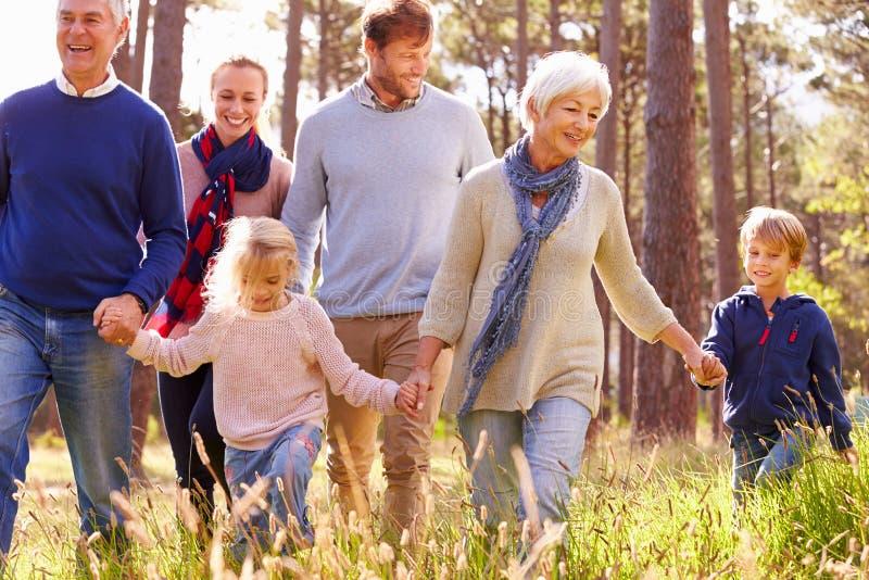 Família feliz da multi-geração que anda no campo foto de stock