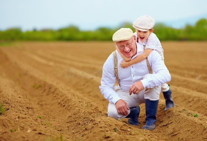 Família feliz do fazendeiro que tem o divertimento no campo da mola foto de stock