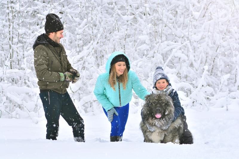 Família feliz: mãe, pai, filho e seu cão grande fotos de stock royalty free