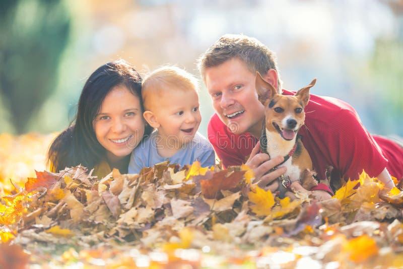 Família feliz no parque do outono que joga com folhas imagem de stock