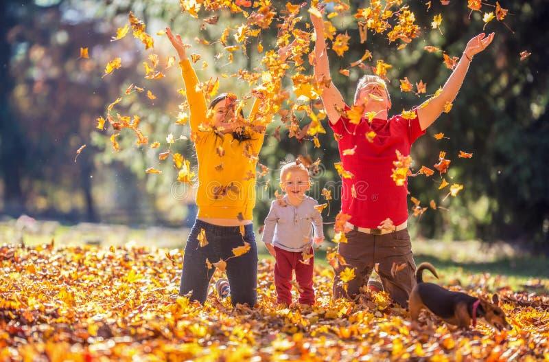 Família feliz no parque do outono que joga com folhas imagens de stock