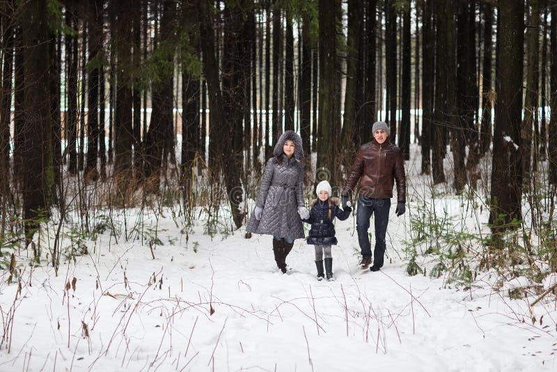 Família feliz que anda em um parque do inverno imagem de stock royalty free