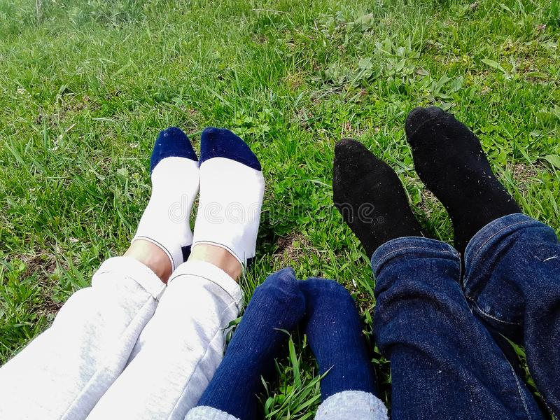 Família feliz que encontra-se no campo de grama no parque fotos de stock royalty free