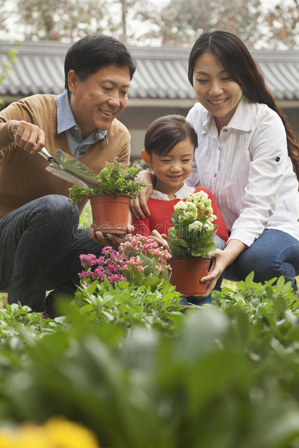 Família feliz que planta flores no jardim imagem de stock royalty free