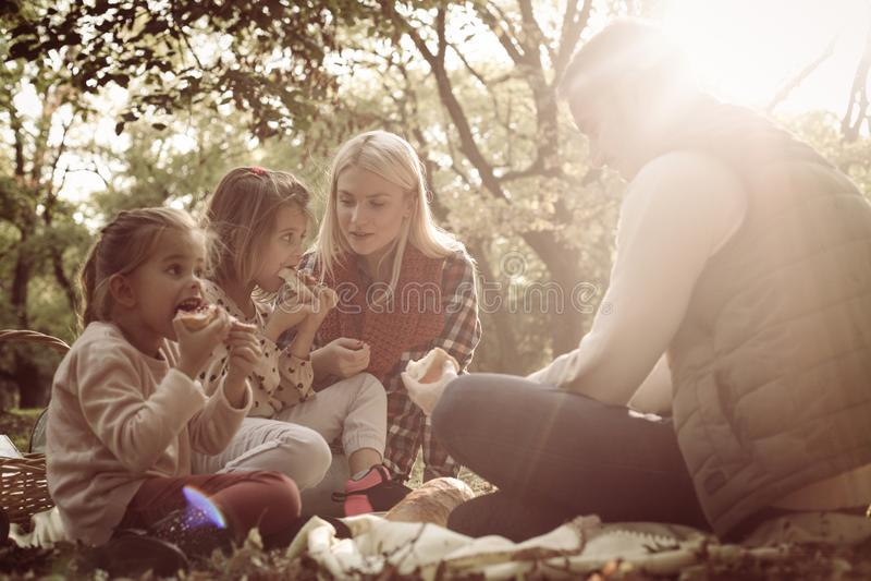 Família feliz que tem o piquenique junto no parque imagens de stock