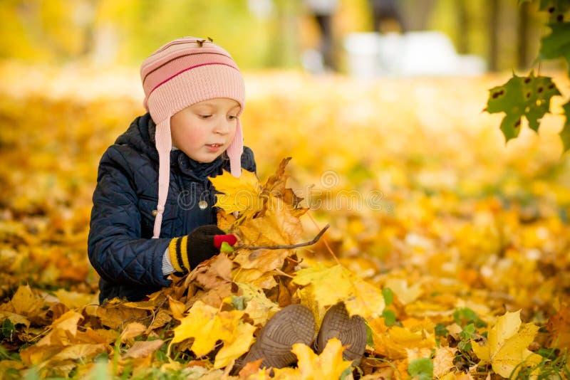 Família, infância, outono e conceito dos povos, menina feliz que joga com as folhas de outono no parque criança pequena, bebê fotos de stock