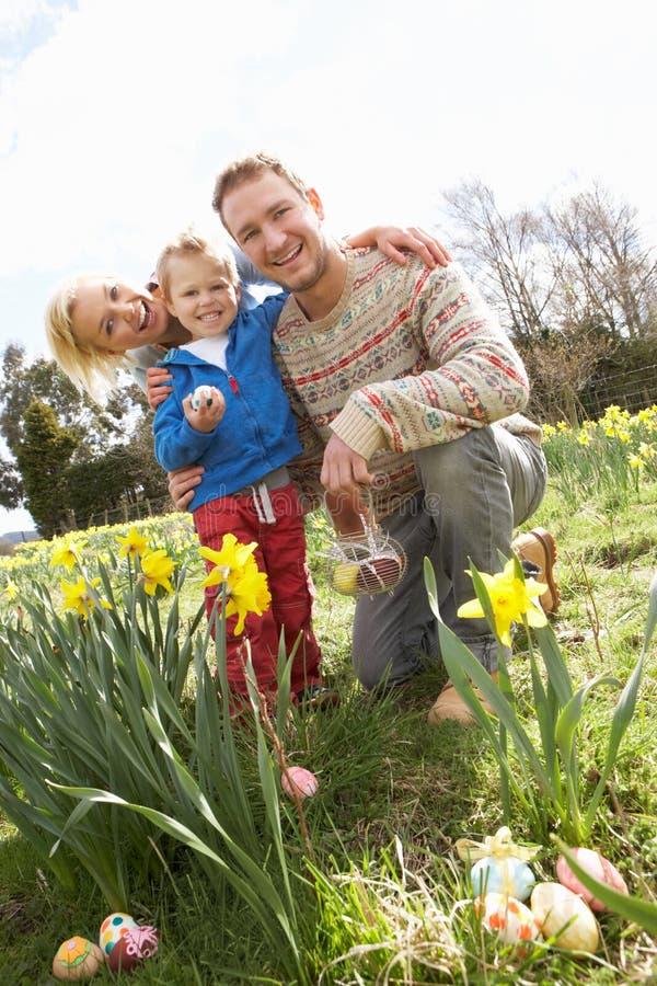 Família na caça do ovo de Easter no campo do Daffodil fotos de stock