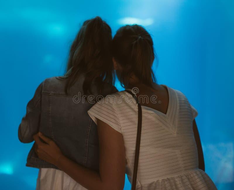 Família no aquário imagem de stock royalty free