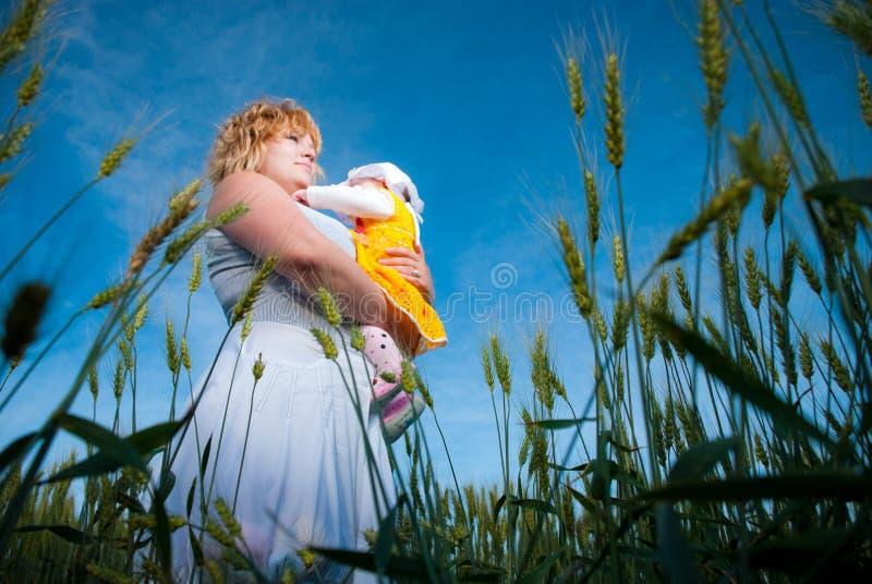 Família no campo do verão fotos de stock