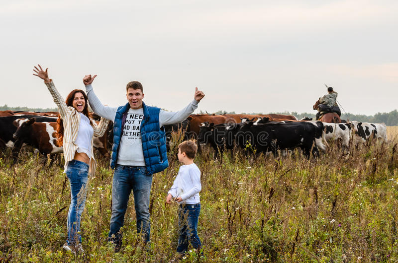 Família nova e um rebanho das vacas fotografia de stock