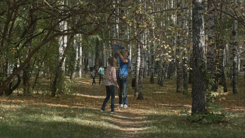 A família nova feliz está tendo o divertimento no parque do outono fora em um dia ensolarado Mãe, pai e seu bebê pequeno foto de stock royalty free