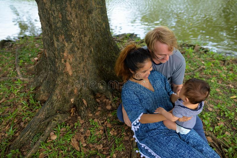família nova Multi-étnica que liga-se junto no parque imagem de stock