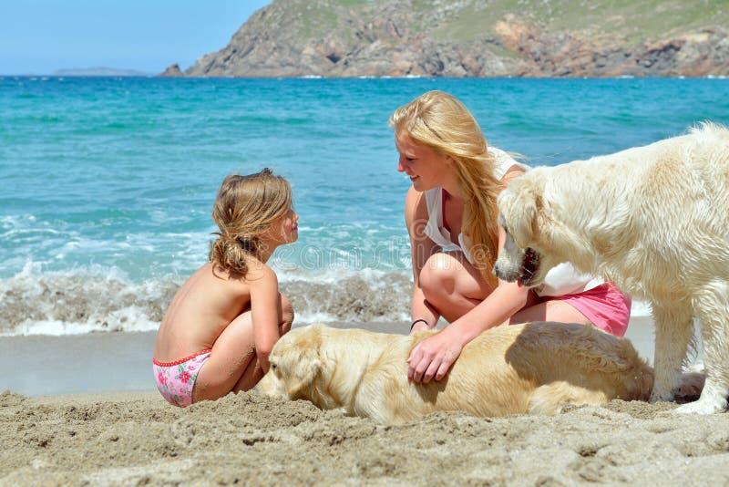 Família nova na praia imagem de stock royalty free